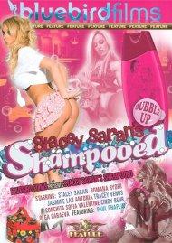 Stacey Saran's Shampooed