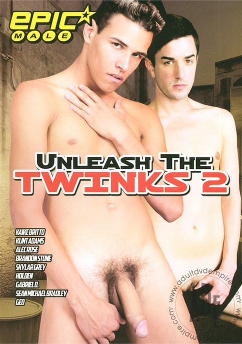 Unleash The Twinks 2 Boxcover