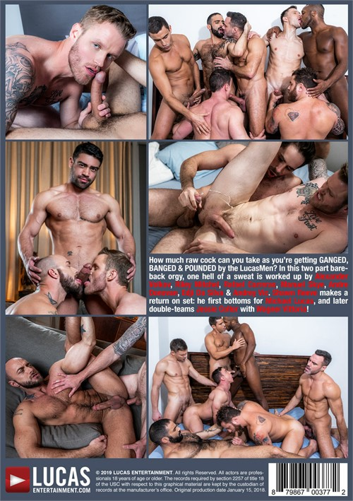 Ganged Banged and Pounded Cover Back