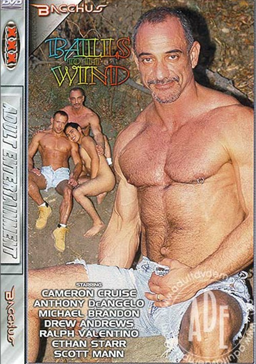 Balls to the Wind Boxcover