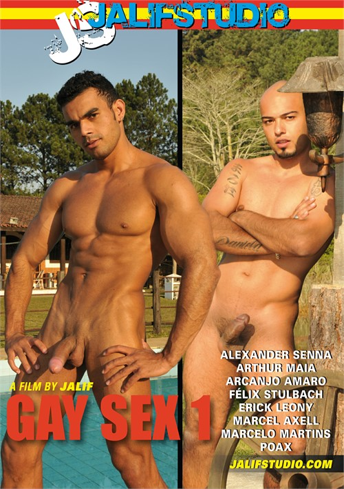 Gay Sex 1 Boxcover