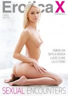 Sexual Encounters Porn Video