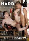 Hard Working Twinks Boxcover