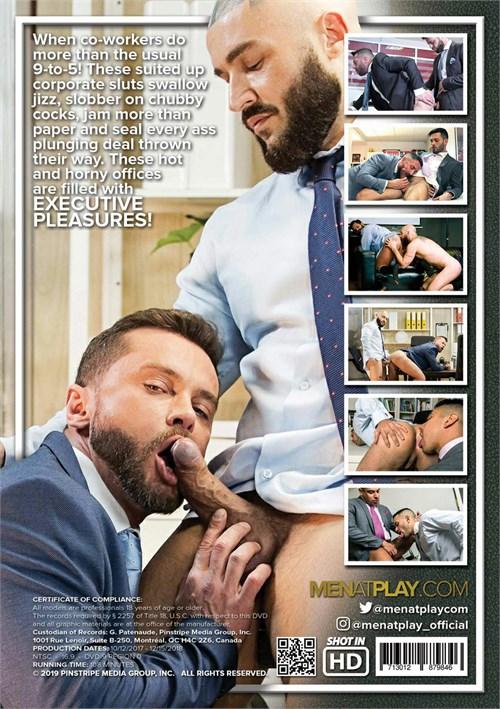 Executive Pleasures vol 1 Cover Back