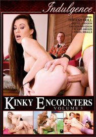 Kinky Encounters Vol. 3 Porn Video