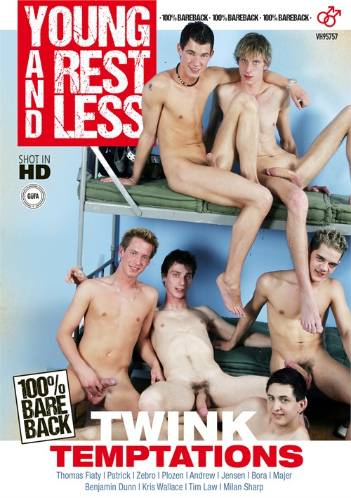 Twink Temptations Boxcover