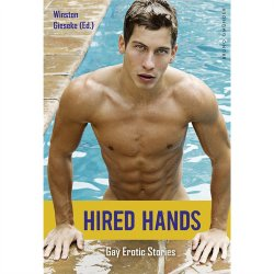 Hired Hands: Gay Erotic Stories Sex Toy