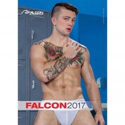 Falcon 2017 Calendar
