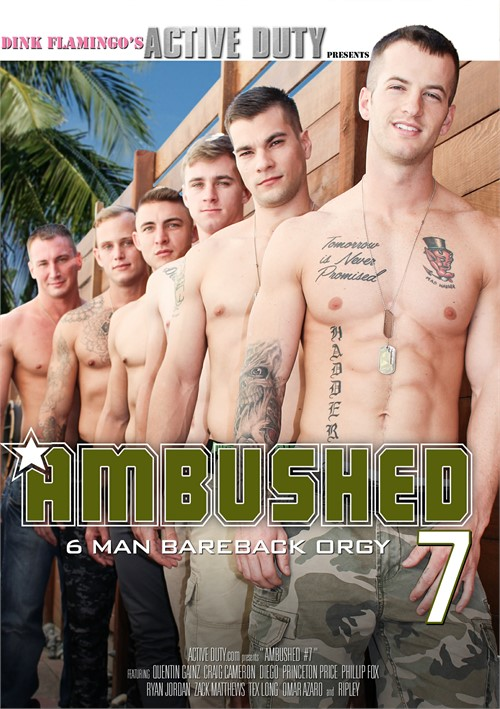 Ambushed 7 Boxcover