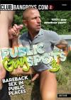 Public Gay Spots Vol. 3 Boxcover