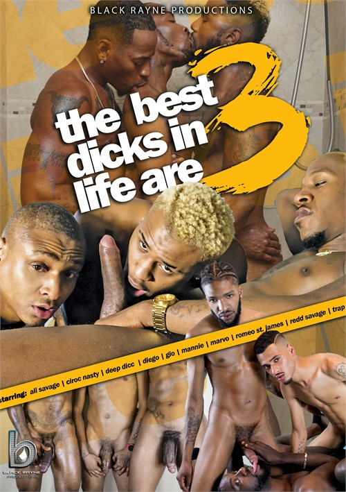 Best Dicks in Life Are 3, The Boxcover