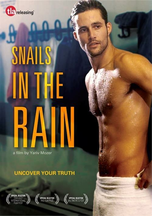 Snails In The Rain image