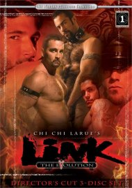 Link: The Evolution (Director's Cut) image