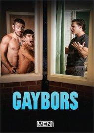 Gaybors Porn Movie