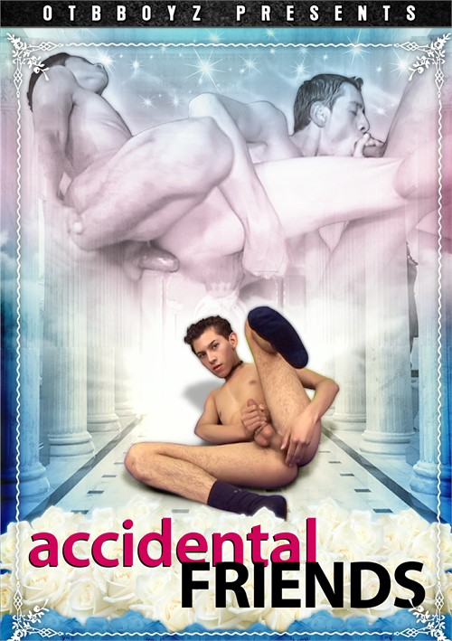Accidental Friends Boxcover