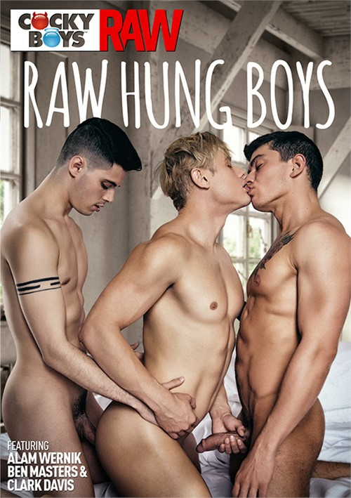 Raw Hung Boys Boxcover