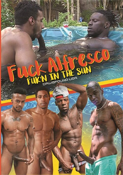 Fuck Alfresco Boxcover