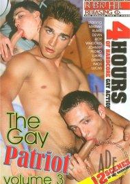 Gay Patriot Vol. 3, The image