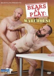 Bears at Play: Warehouse image