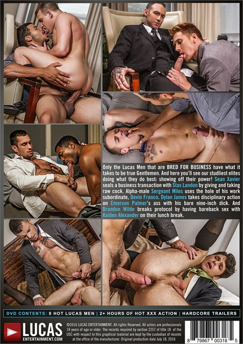 Gay porn business