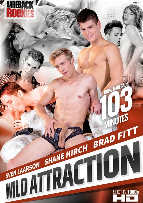 Wild Attraction Boxcover