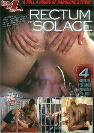Rectum of Solace image