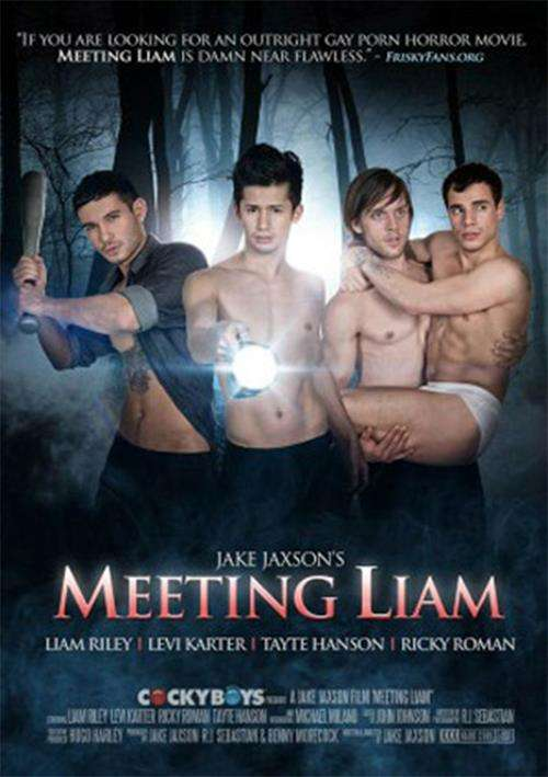 Meeting Liam Boxcover