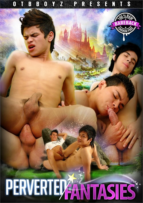 Perverted Fantasies Boxcover