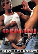 Gemini Boxcover