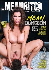 Mean Dungeon 15 Porn Movie