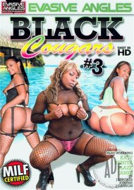 Black Cougars 3 image