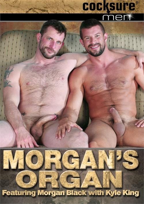 Morgan's Organ Boxcover