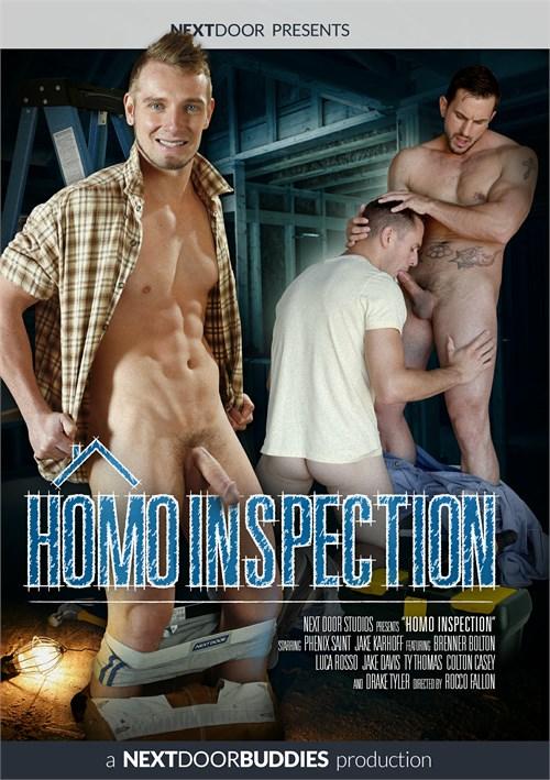 Homo Inspection Boxcover