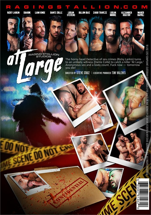 At Large Cover Front