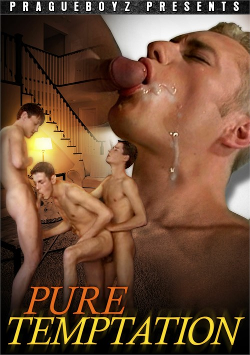 Pure Temptation Boxcover