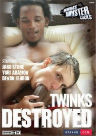 Twinks Destroyed image