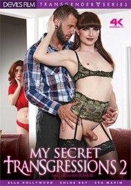 My Secret Transgressions 2 image