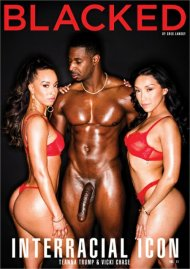 Buy Interracial Icon Vol. 11 porn DVD from Blacked.