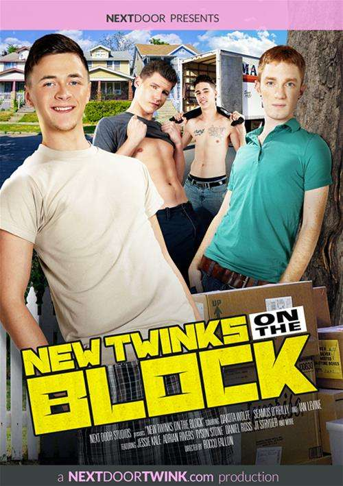 New Twinks On The Block Boxcover