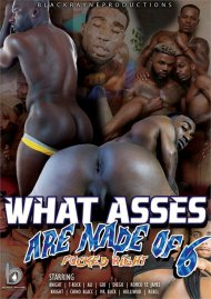 What Asses are Made of 6 gay porn DVD from Black Rayne Productions