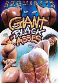 Giant Black Asses