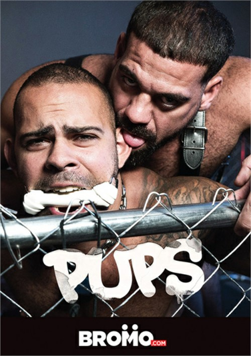 Pups image