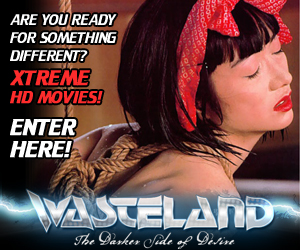 Wasteland Promotion