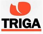 Triga Films